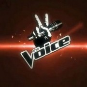 The Voice, tra Axforismi e blind audition